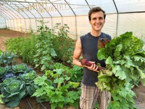 Harvest-Pic